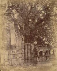 General view of the small temple at Janjgir, Bilaspur District